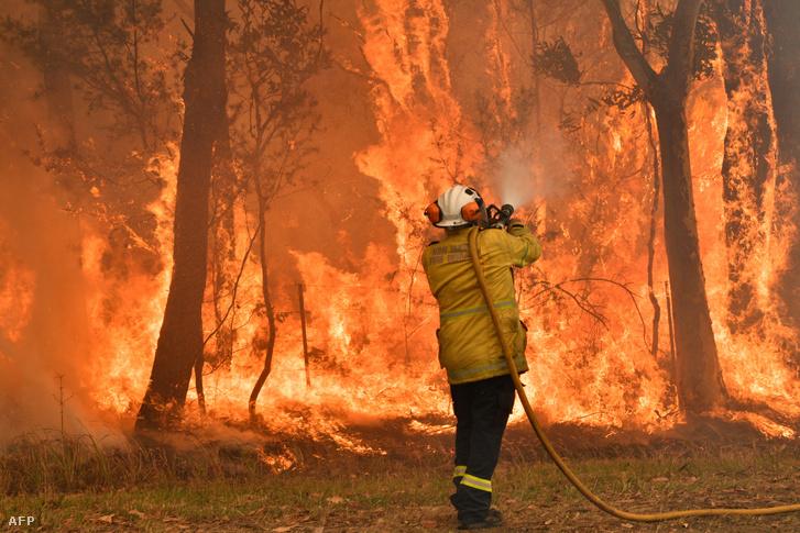 Tűzoltó küzd a bozóttűzzel Sydneytől 90-110 kilométerre északra 2019. december 10-én