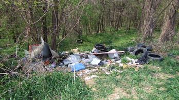 Autógumikat, redőnydarabokat, műszerfalat szórt szét az erdőben, elkapták