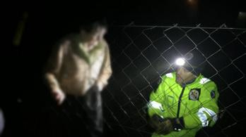 Kihűlve talált rá egy 82 éves idős asszonyra a mentőkutya