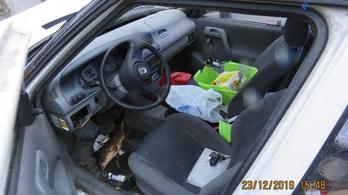 Kis híján megölte a tulajdonosát egy karácsonyra vásárolt élő ponty Csehországban
