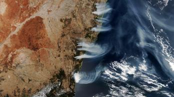 Bozóttüzek Ausztráliában: súlyos katasztrófaveszély Canberrában