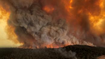 Súlyosbodó ausztrál bozóttüzek: a turistákat távozásra szólították fel