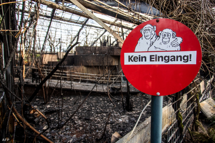 Nem bejárat tábla a kiégett majomháznál a Krefeld Állatkerben 2020. január 1-én