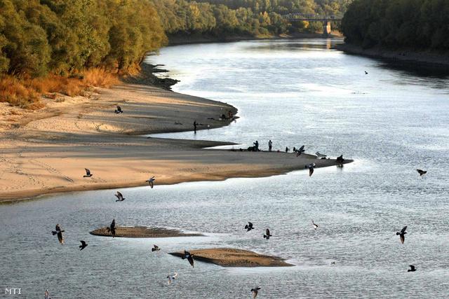 A Tisza partja a kiskörei vízlépcső alvízi oldalán