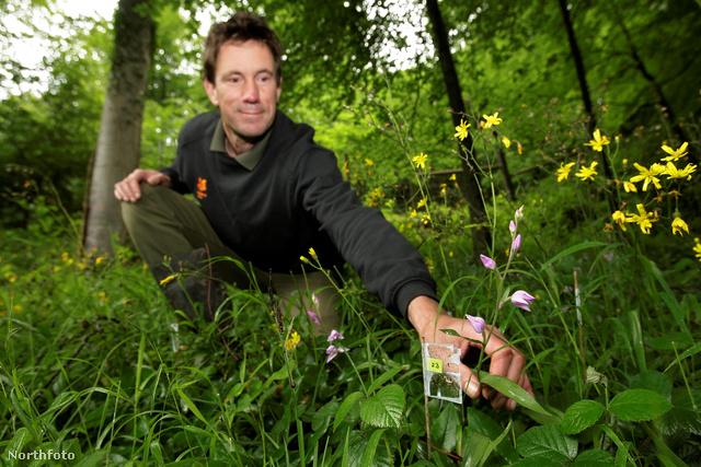 Tim Jenkins a nem túl látványos orchideákkal