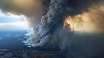 Rendkívüli helyzetet hirdettek az ausztrál bozóttüzek miatt