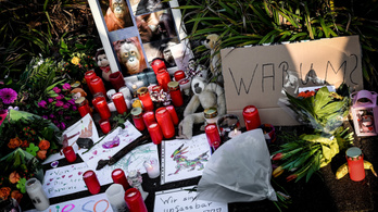 Egy anya és lányai okozhatták a német majomház tüzét