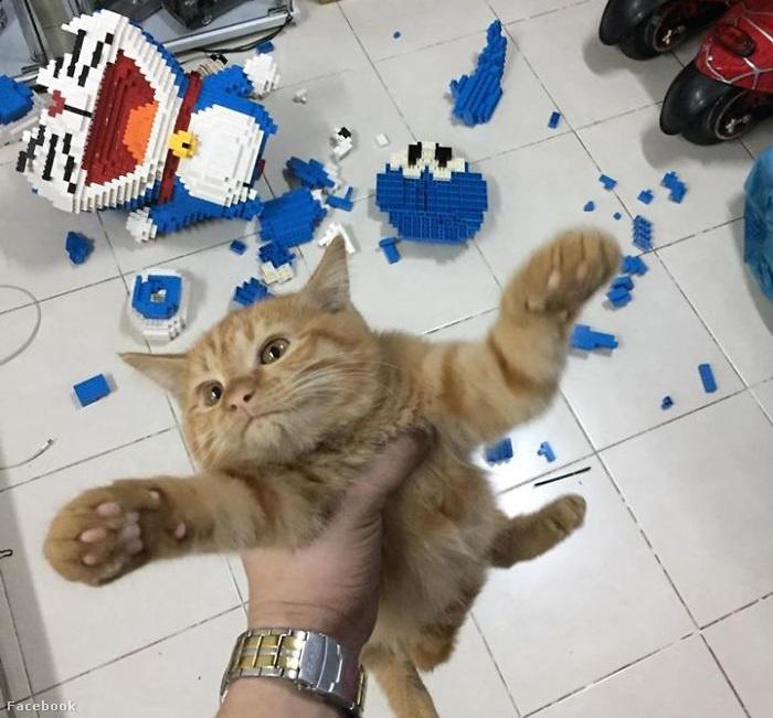 cat-destroys-doraemon-figure-4-5e0c5caec3427  700