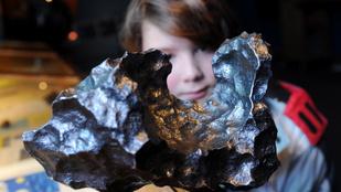 Az ember, aki túlélte, hogy rázuhant egy meteorit