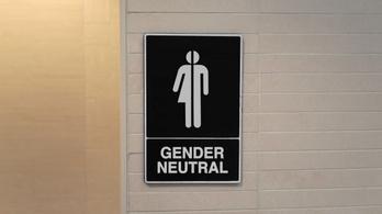 A gendersemleges