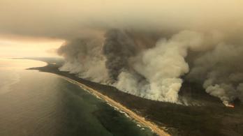 Tűzoltók szóltak be az ausztrál kormányfőnek a pusztító bozóttüzek miatt