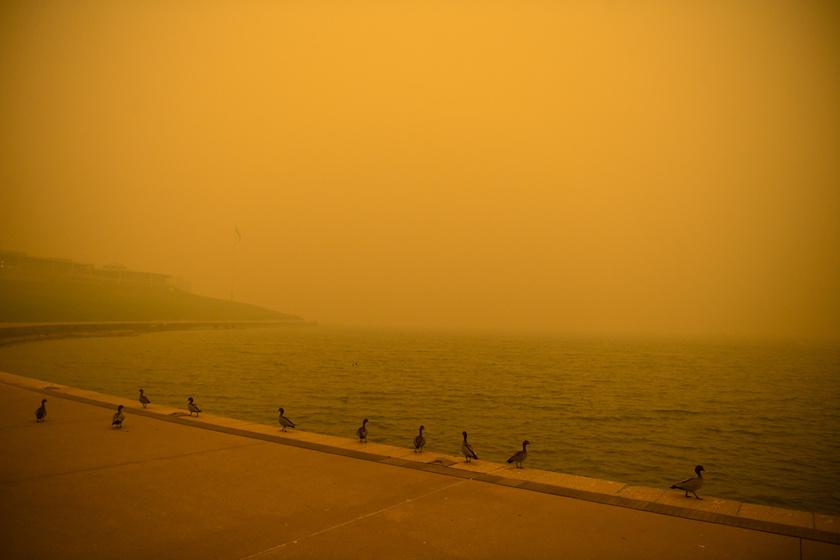 2020. január 5-én a bozóttűz füstje ellepte Canberrát. Ezzel az ausztrál főváros levegője lett a legrosszabb minőségű a világon.