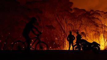 Bozóttüzek Ausztráliában 2019-2020