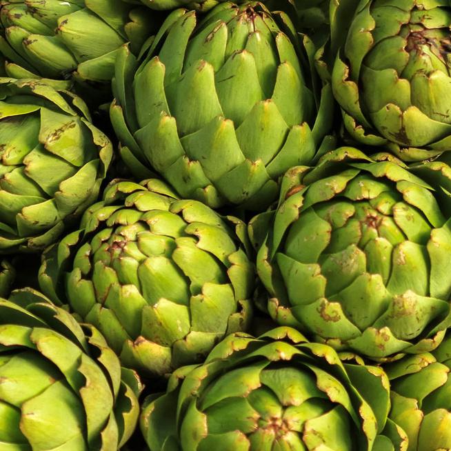 A mediterrán konyha kedvelt zöldsége az articsóka – Emésztési gondokkal küzdőknek különösen ajánlott