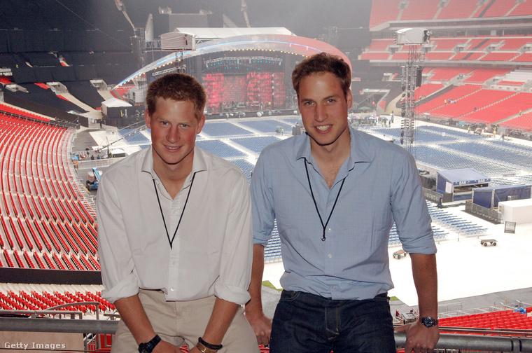 Két testvér: Harry herceg és Vilmos herceg.
