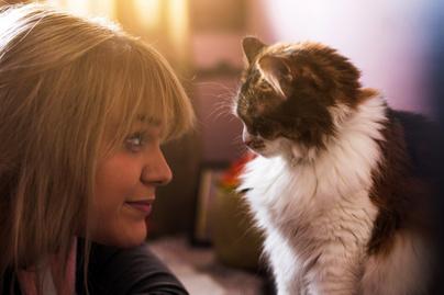 macska-ember-arc