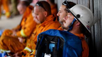 Újabb tűzoltó halt meg az ausztrál tűzvészben