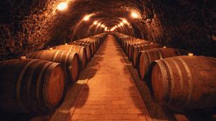 CNN: egy magyar bor lett 2019 legdrágább bora
