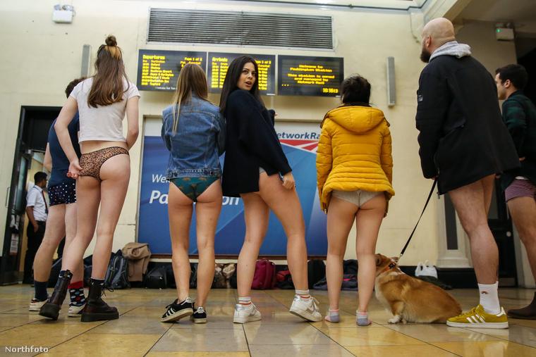 Vajon melyik állomásra tartanak a hölgyek?