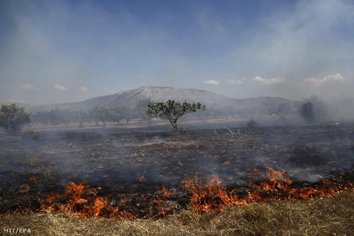 Bozottűz pusztít az Athén szomszédságában fekvő Koropiban 2016. július 4-én.