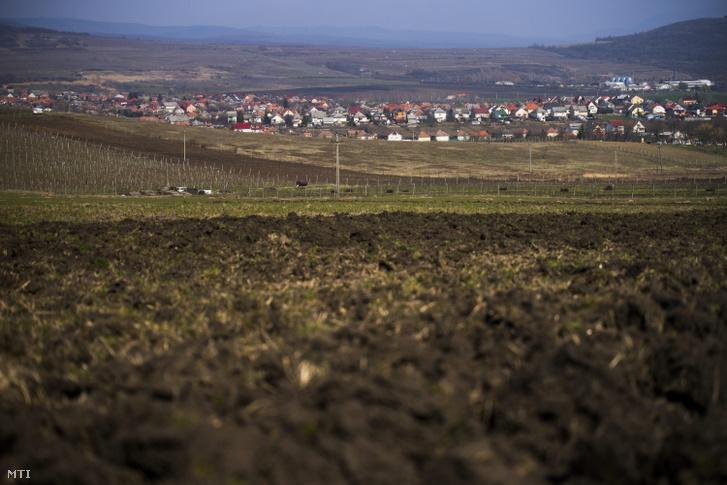Gyöngyöspata látképe a falu határából