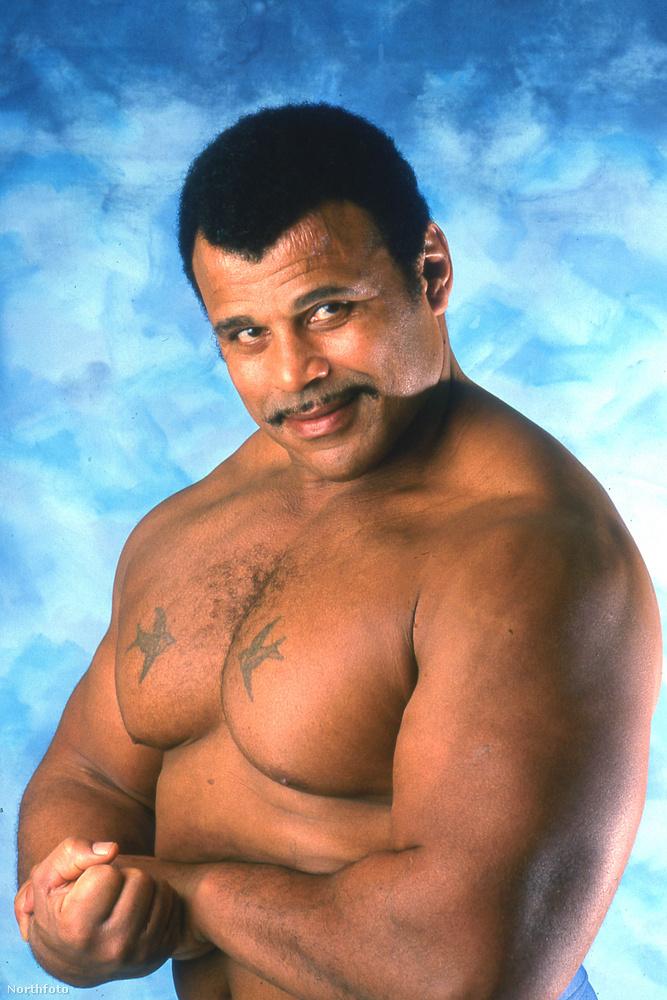 Rocky Johnson 1964-ben debütált pankrátorként és 1991-ben ment nyugdíjba