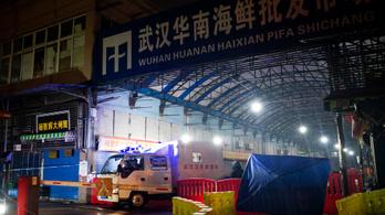 Két embert megölt a rejtélyes koronavírus Kínában