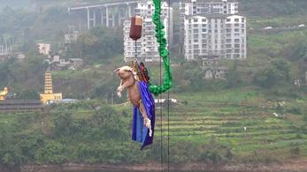 Bungee jumpingozó malacon háborodtak fel a kínai internetezők
