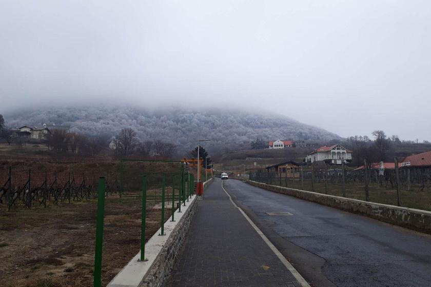 Ködbe burkolózott a Badacsony, és imádtuk: a Gasztrohegyen a tél legjavát élveztük ki