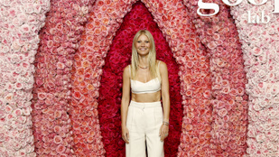 Gwyneth Paltrow egy óriási virágvagina előtt pózolt