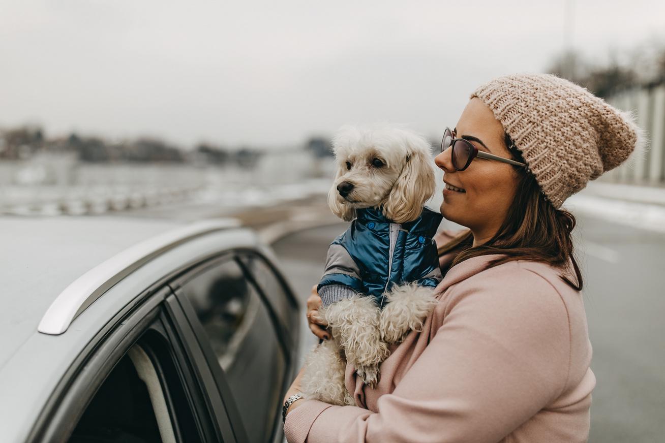 kutyaval-utazas
