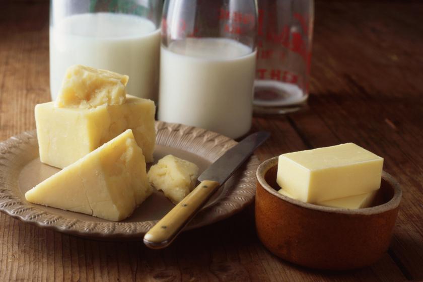 tej és sajt