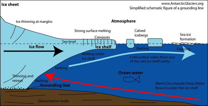 A gleccser tengerbe lógó részének metszeti képe. Az érintkezési vonal (grounding line) a jég és a szárazföld elválásánál van.