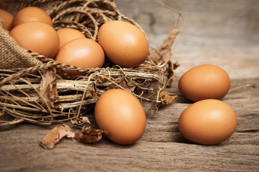tojásct