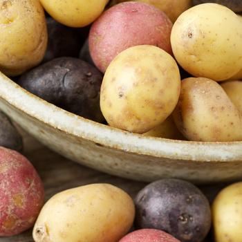 Válasszunk megfelelő krumplifajtát az ételekhez – Sokkal finomabb lesz a végeredmény