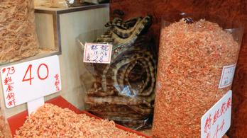Mérgeskígyókról terjedhetett emberekre a kínai koronavírus