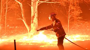 10 millió dollár nem jut el az ausztrál tüzek áldozataihoz a nekik felajánlott pénzből