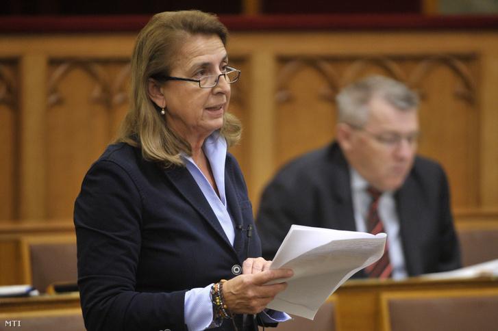 Molnár Ágnes, a Fidesz vezérszónoka felszólal az Országgyűlés plenáris ülésén 2018. november 29-én.