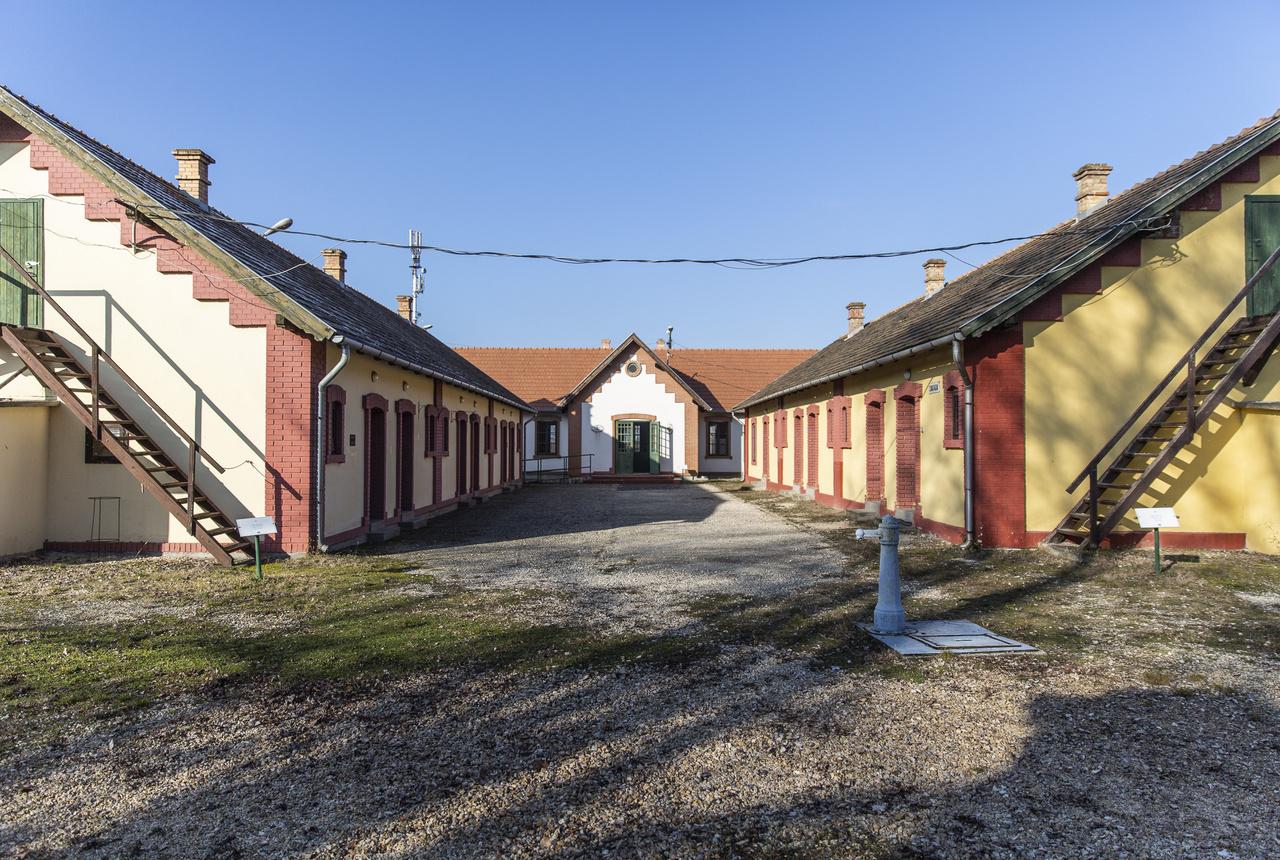 Magyarországon egyedülálló módon a tatabányai skanzen az egyetlen szabadtéri múzeum, ami az iparosodással kapcsolatos építészeti, települési, életmódbeli jellegzeteségeket mutatja be, szemléltetve az ipari munkások, elsősorban a bányászok élet- és munkakörülményeit. A skanzen területén a régi bányaüzem teljes épületegyüttesén kívül az egykori tatabányai bányászkolóniák jellegzetes lakó- és középületei is láthatók, bennük korhű a berendezés és rendkívül gazdag a használati tárgyak, munkaeszközök gyűjteménye.