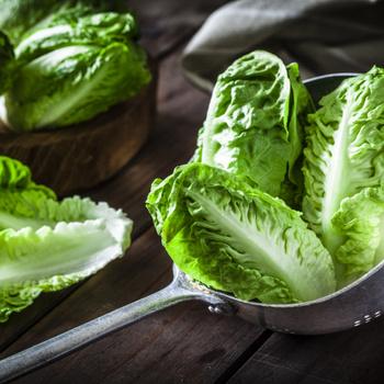 Így marad sokáig friss a salátalevél – Egyszerű praktika, amitől nem esik össze