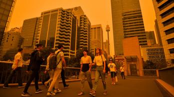 Az ausztrálok fele a saját pénzével is segíti a bozóttüzek elleni harcot