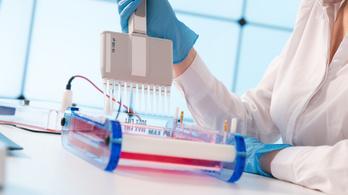 Kutatók 102 gént kötöttek össze az autizmussal