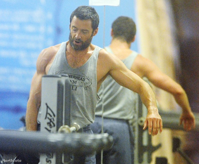 Hugh Jackman konditeremben, Syndney-ben