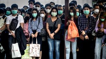 Nyolcszorosára nőtt egy arcmaszkokat gyártó cég árfolyama, a kínai baromfitenyésztők viszont nagyon megszívták
