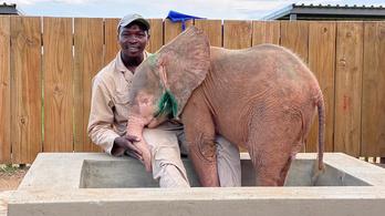 Albínó elefántlányt mentettek ki fojtóhurokból Dél-Afrikában