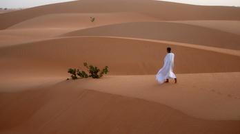 A homokdűnék képesek egymással kommunikálni