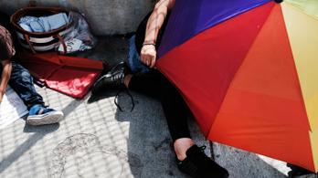Másfél millió hajléktalan diák van Amerikában