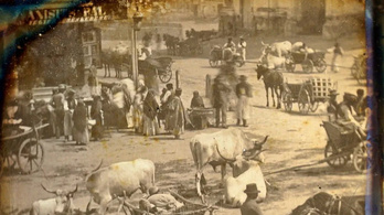 Magyar fotótörténeti ritkaság került elő egy francia gyűjteményből