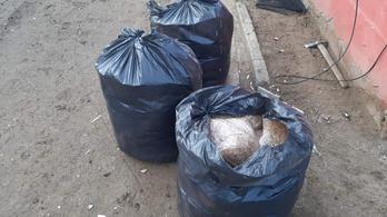 Fekete kukazsákokban állt 72 kiló dohány egy ház padlásán