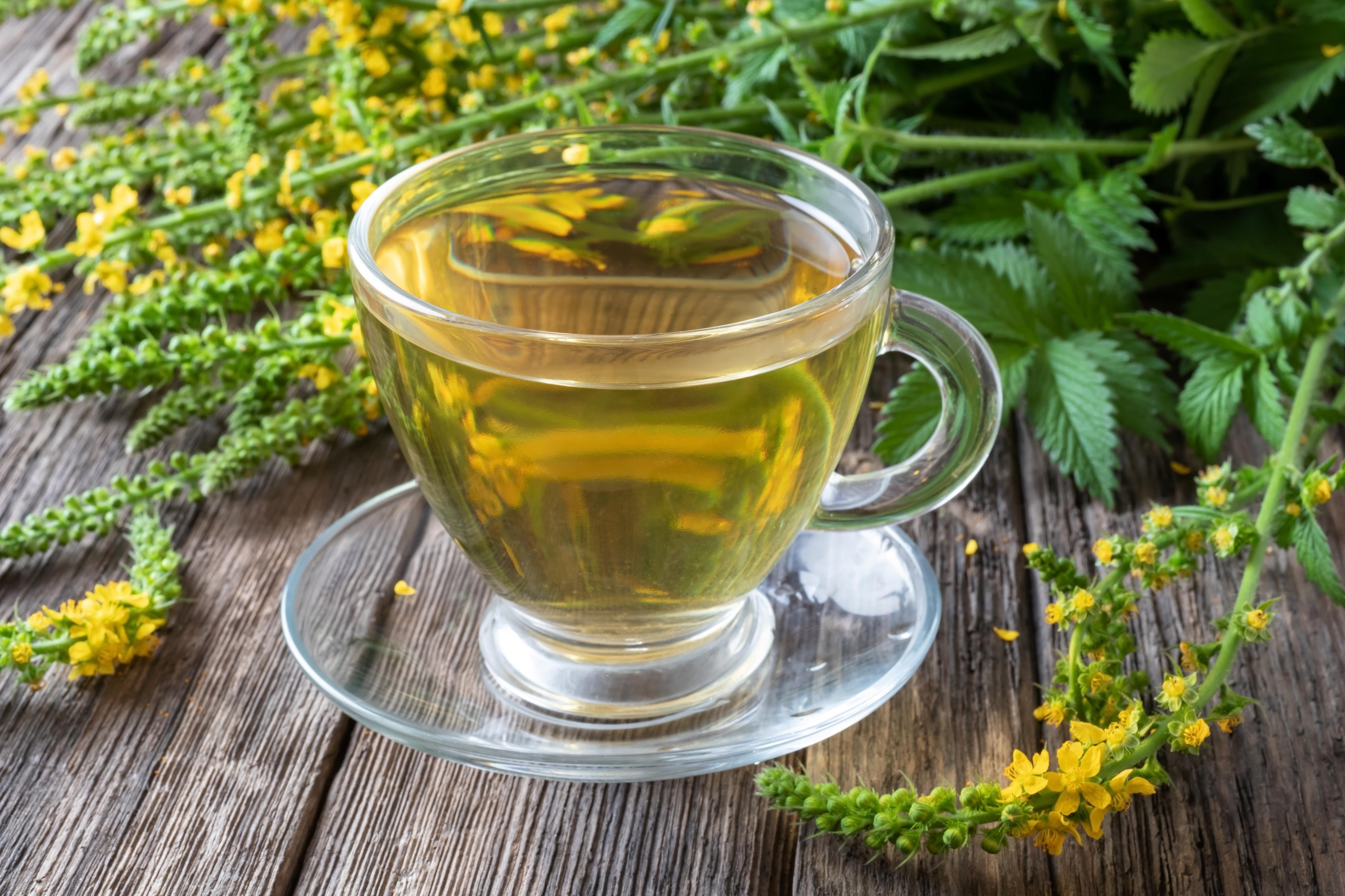 hólyaghurut tea stagnáló prostatitis hogyan kell kezelni